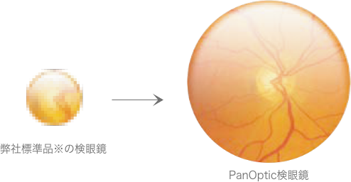 fig_panoptic_magnify.png